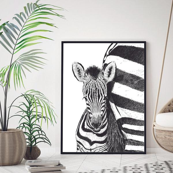 Plakater med dyr - Zebra