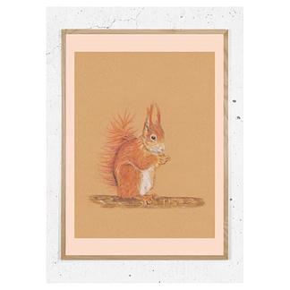 Plakat med Egern