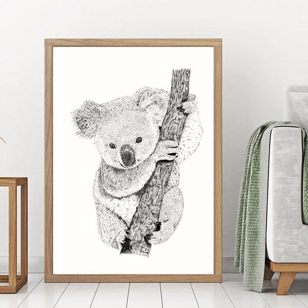 Plakater med dyr - Koala
