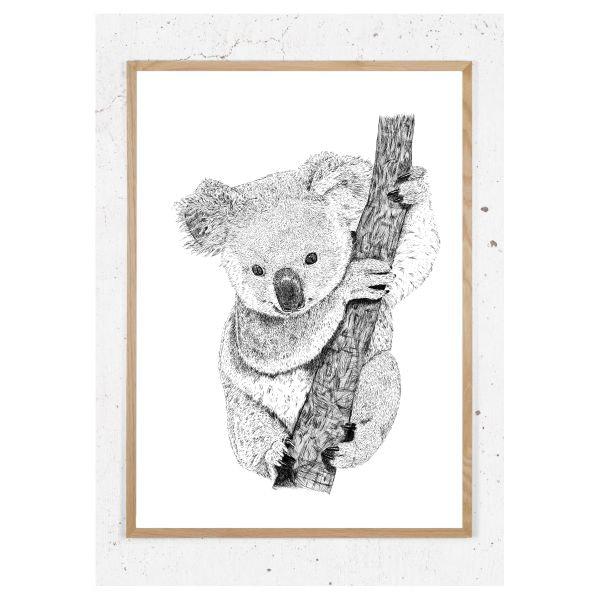 Plakat med koala