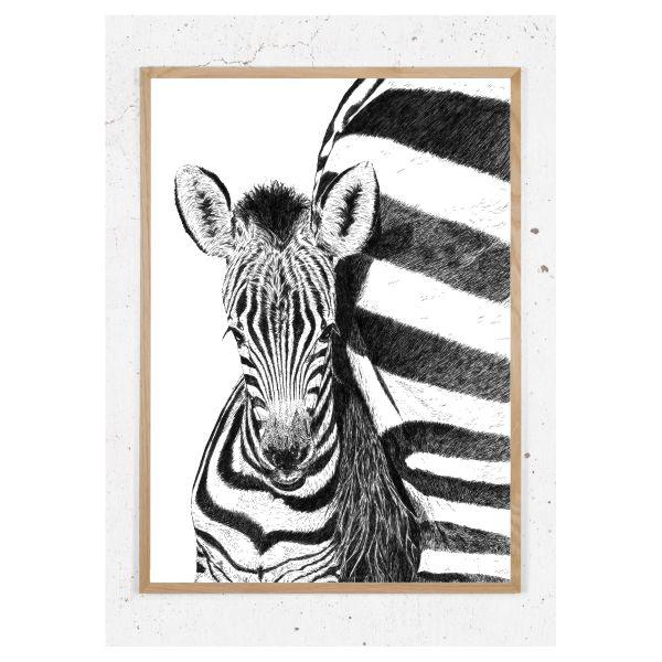 Plakat med zebra