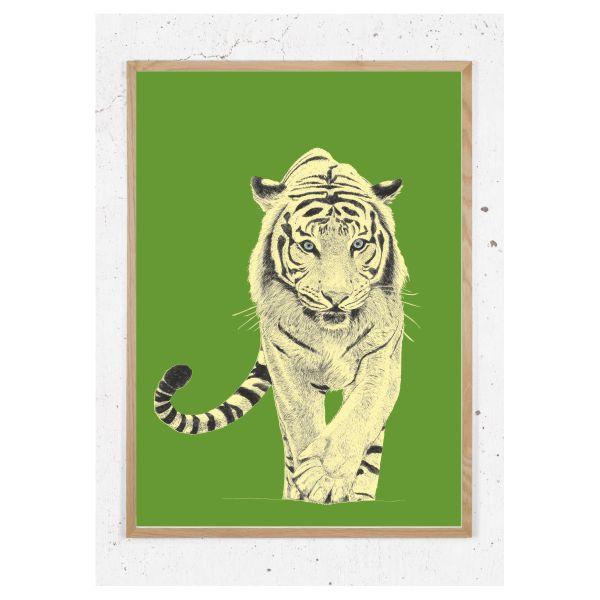 Tiger gammelgrøn