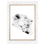 Plakat med løvemor