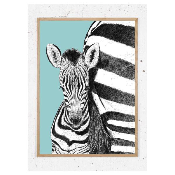 Zebra_blå