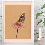 Plakat med sommerfugl på solhat