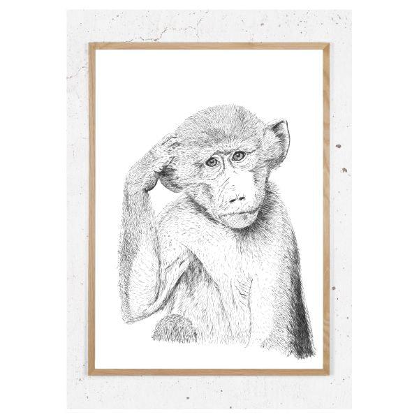 Plakat med tænkende macca abe