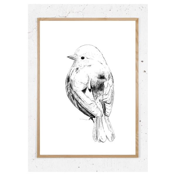 Plakat med spurvefugl