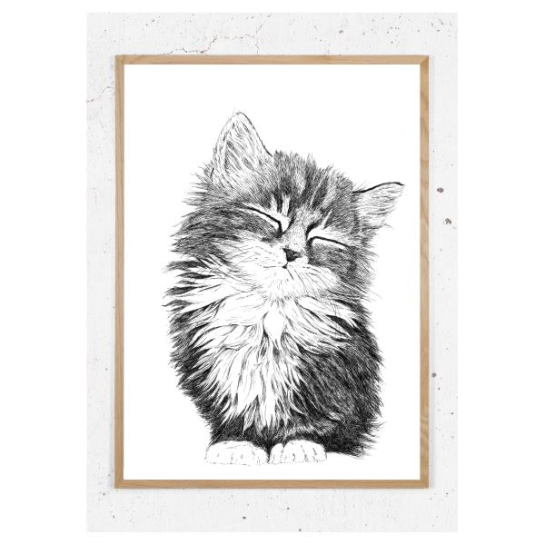 Plakat med kattekilling