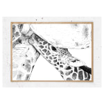 Plakat med girafunge