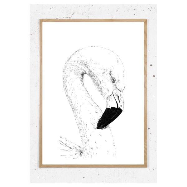 Plakat med flamingo
