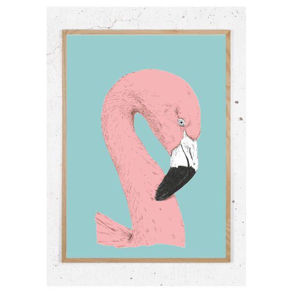 Flamingo_Rosa_turkis
