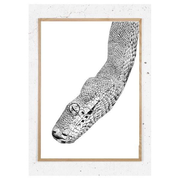 Plakat med slange