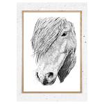 Plakat med hest