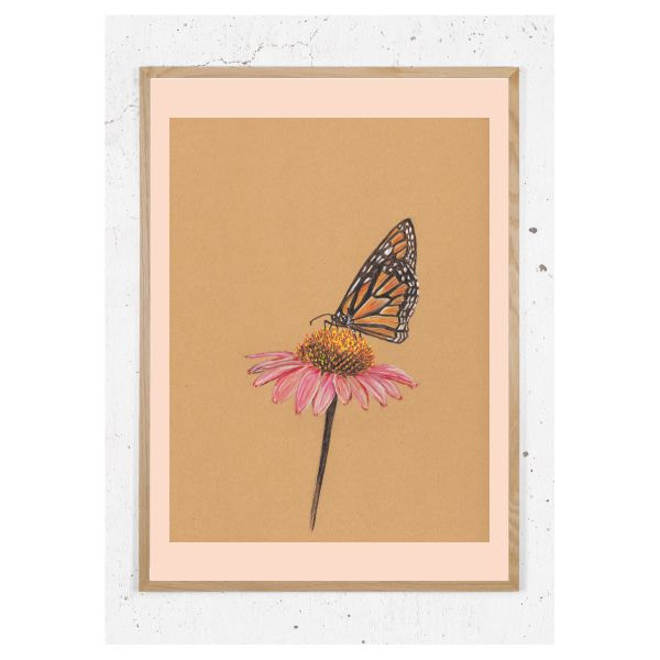 plakat med sommerfugl