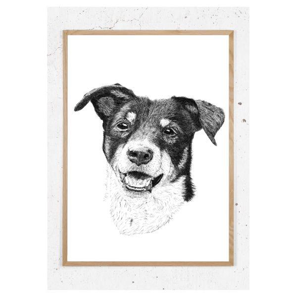 Plakat med hund