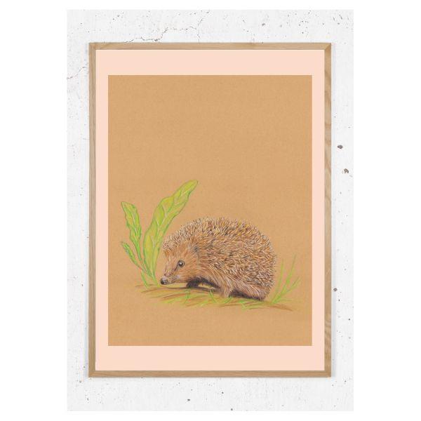 Plakat med pindsvin