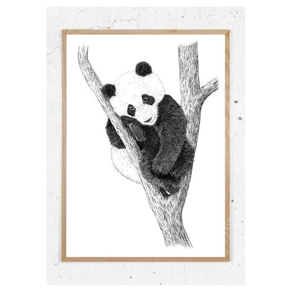 Plakat med panda